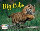 Image for Big cats