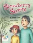 Image for Strawberry Storm : Pack of 6
