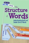 Image for The structure of words