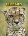 Image for Cheetahs