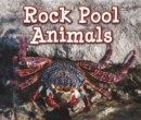 Image for Rock pool animals