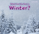 Image for What can you see in winter?