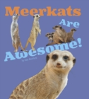 Image for Meerkats are awesome!