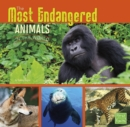 Image for The most endangered animals in the world
