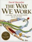 Image for The way we work  : explore the human body - head to toe!
