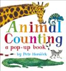 Image for Animal counting  : a pop-up book