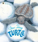 Image for One tiny turtle