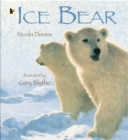 Image for Ice bear