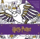 Image for Harry Potter: Winter at Hogwarts: A Magical Colouring Set