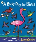 Image for A busy day for birds