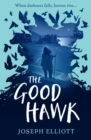 Image for The good hawk