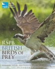 Image for RSPB British birds of prey