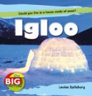 Image for Igloo  : could you live in a house made of snow?