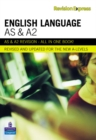 Image for English language  : A-level study guide