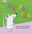 Image for Bug Club Phonics Bug Set 05 Big Fat Rat