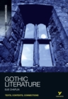 Image for Gothic literature