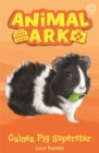 Image for Guinea pig superstar
