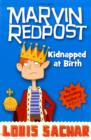 Image for Kidnapped at birth