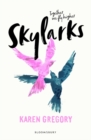 Image for Skylarks