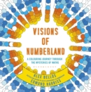 Image for Visions of numberland  : a colouring journey through the mysteries of maths