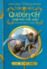 Image for Quidditch through the ages