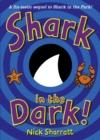 Image for Shark in the dark!