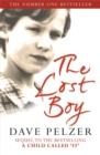 Image for The lost boy  : a foster child's search for the love of a family