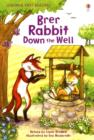 Image for Brer Rabbit down the well