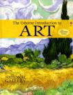Image for The Usborne introduction to art