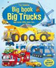 Image for The Usborne big book of big trucks