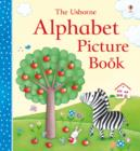 Image for The Usborne alphabet picture book