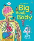 Image for The Usborne big book of the body