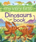 Image for Usborne my very first dinosaurs book