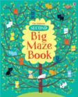 Image for The Usborne second big maze book