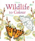 Image for Wildlife to Colour