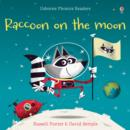 Image for Racoon on the Moon