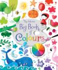 Image for The Usborne big book of colours