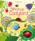 Image for Wind-up Ladybird