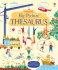 Image for Usborne big picture thesaurus