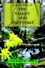 Image for The Valley and Daffodils (Rabbit Brook Tales Volume 1)