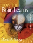 Image for How the brain learns