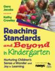 Image for Reaching standards and beyond in kindergarten  : nurturing children's sense of wonder and joy in learning
