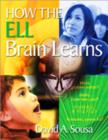 Image for How the ELL Brain Learns