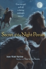 Image for Secret of the Night Ponies