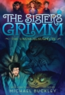 Image for Sisters Grimm: Book Two: The Unusual Suspects (10th anniversary reissue)