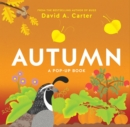 Image for Autumn  : a pop-up book