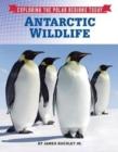 Image for Antarctic wildlife