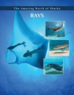 Image for Rays