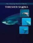 Image for Thresher sharks