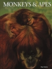 Image for Monkeys & apes